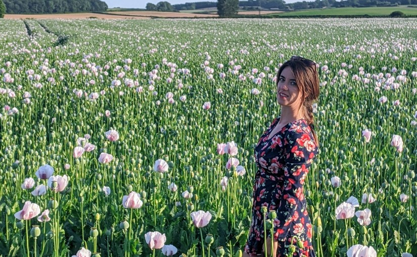 June in Bournemouth: poppy fields, hand-picked strawberries and other pleasures…